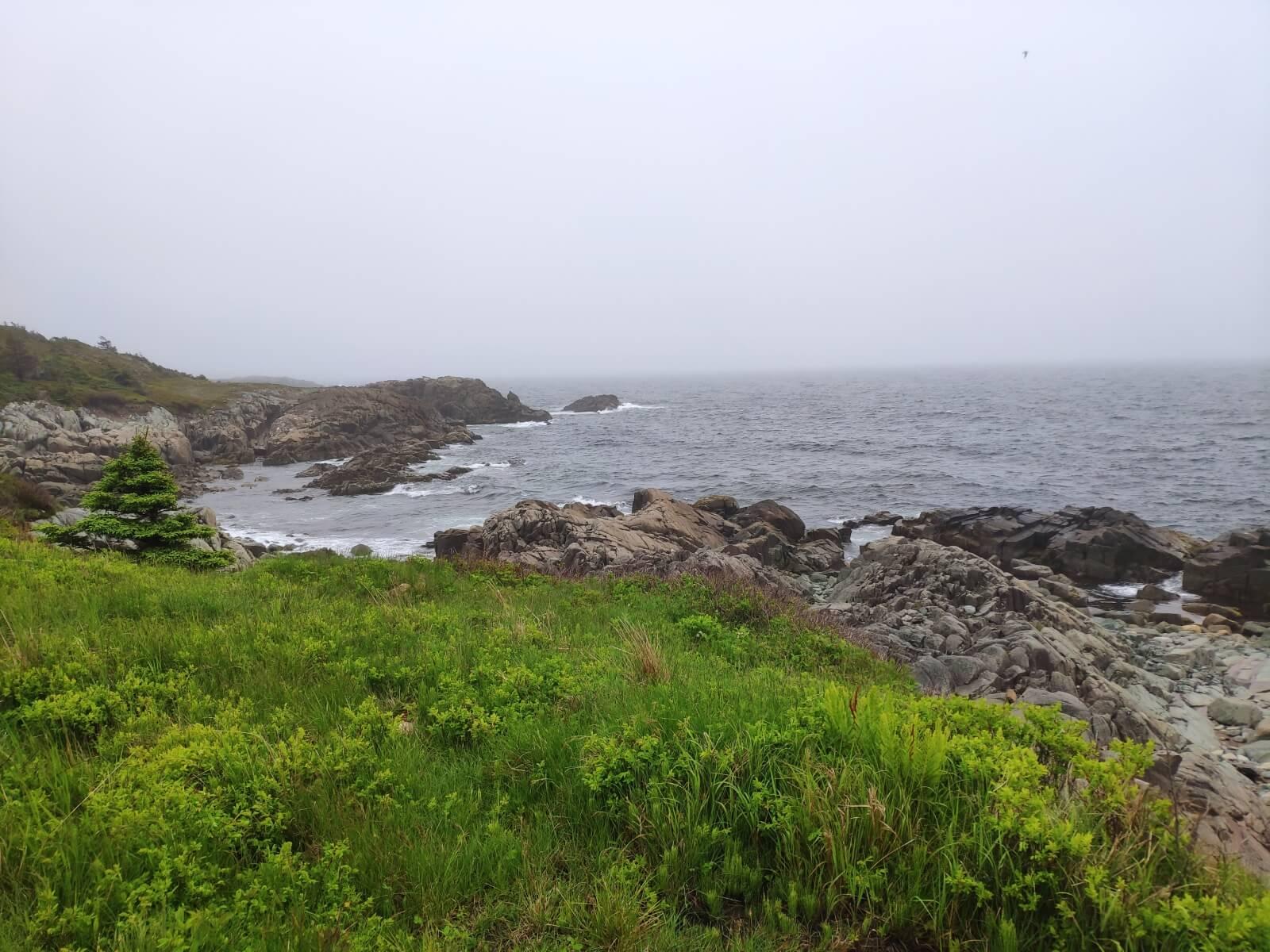 25.06. bis 03.07.2019: Die ersten Tage in Kanada (Nova Scotia) mit Zechprellerei!