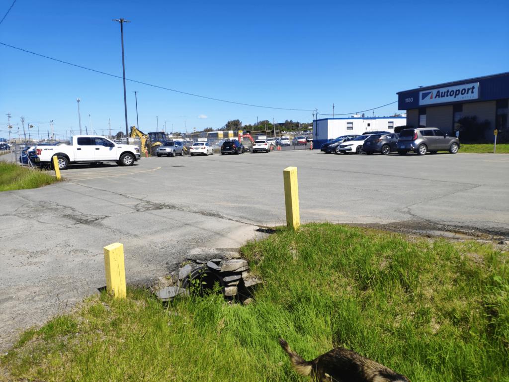Das Wohnmobil in Halifax (Kanada) abholen – RoRo Schiff