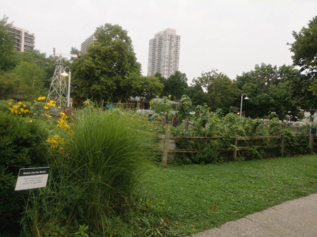 Der Park am Zoo