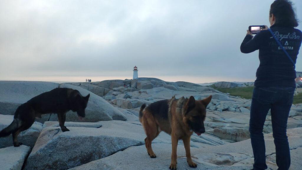 Iris und Finn und Kaschmir in Peggy's Cove