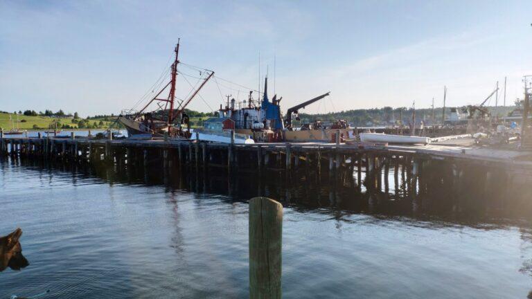 Lunenburg Hafen mit teils recht kaputten Schiffen