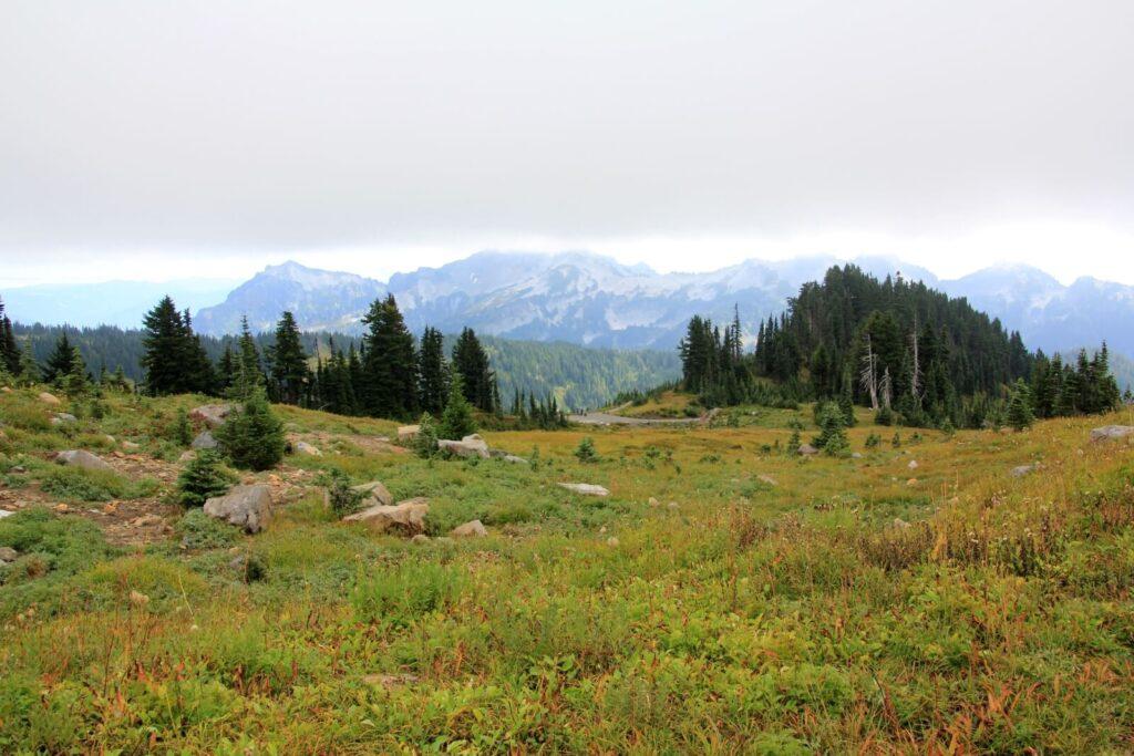 Berge im Nationalpark Mt Rainier