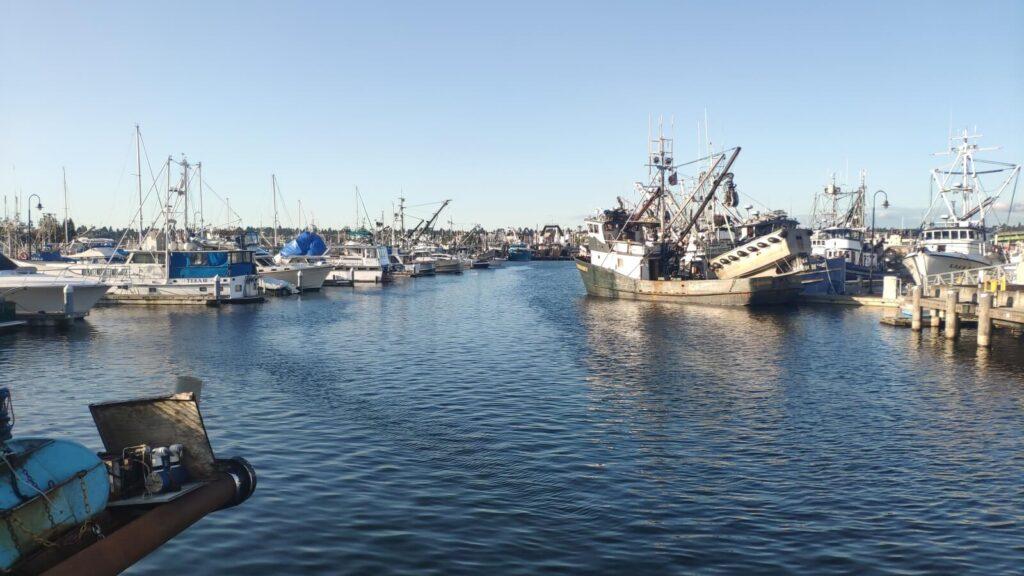 Seattle kleiner Fischerhafen