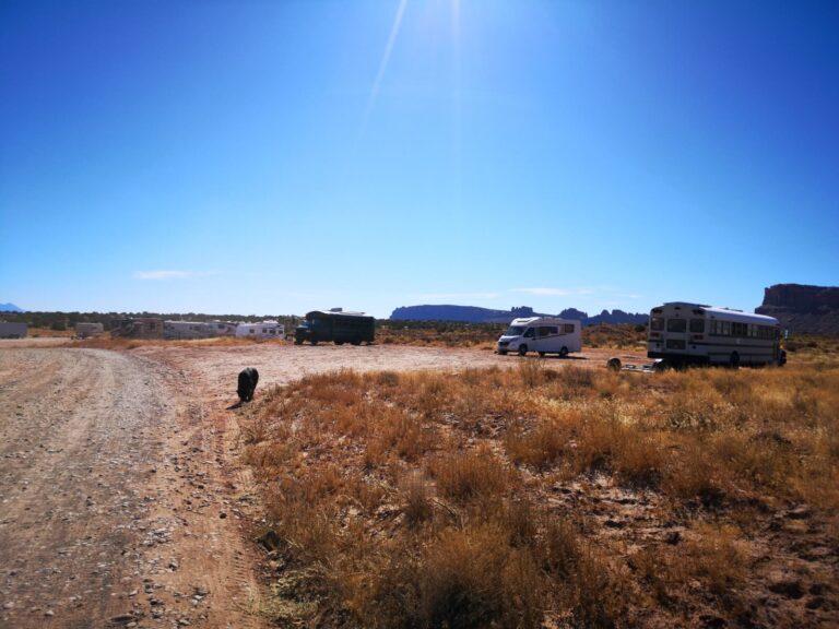 Finn am Stellplatz nahe Moab