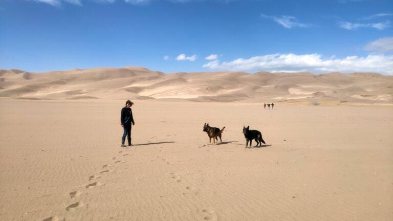 Great Sand Dunes Iris und die Hunde