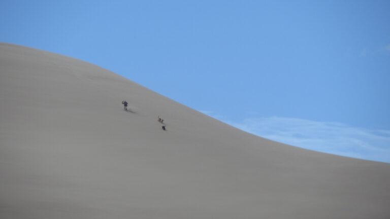 Great Sand Dunes Maik und die Hunde springen eine Düne runter