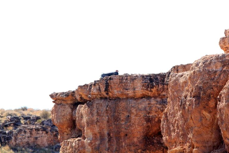 Navaho Bridge Condor