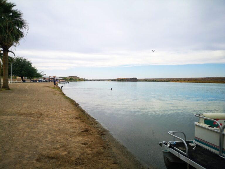 Bluewater Hundeschwimmen