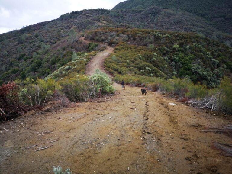 Laguna Mountain Wanderweg