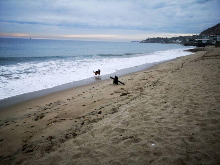 Malibu Beach 2