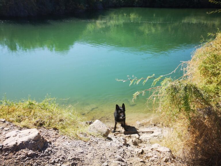 Mittry Lake Finn