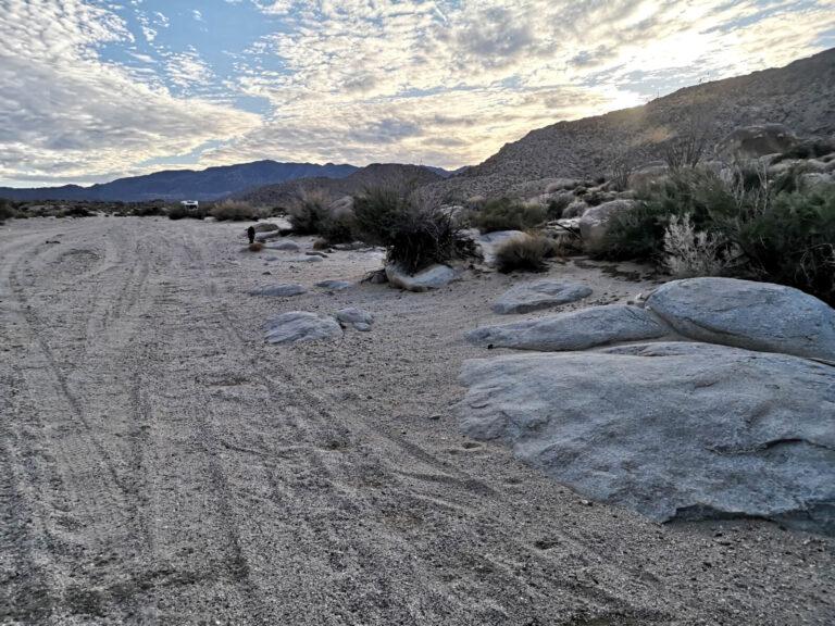 Ocotillo Wüstencamp