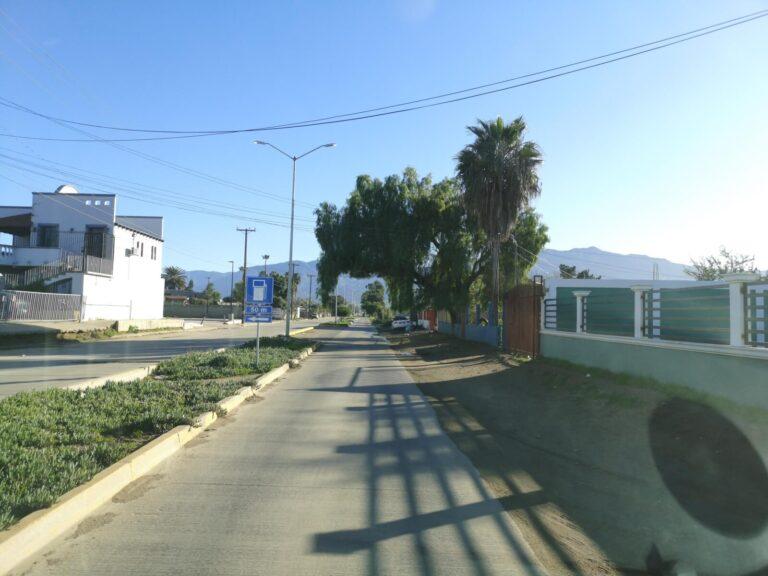Straße mit Baum Ensenada