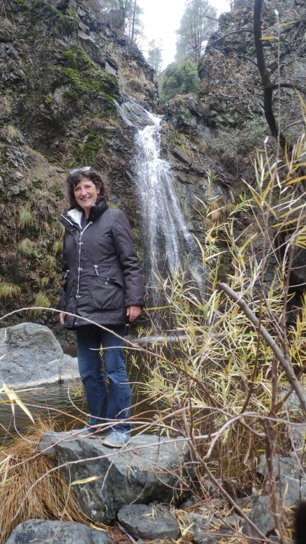 Iris am Wasserfall