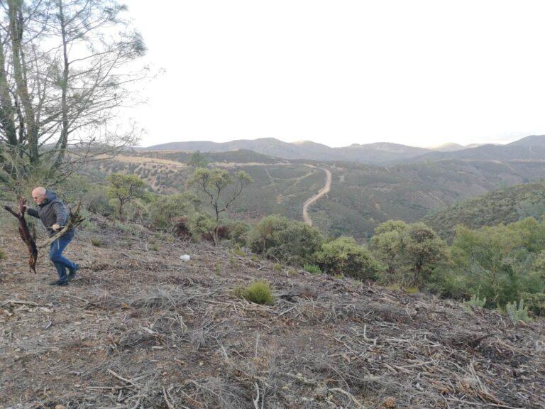 Williams Hill Ausblick