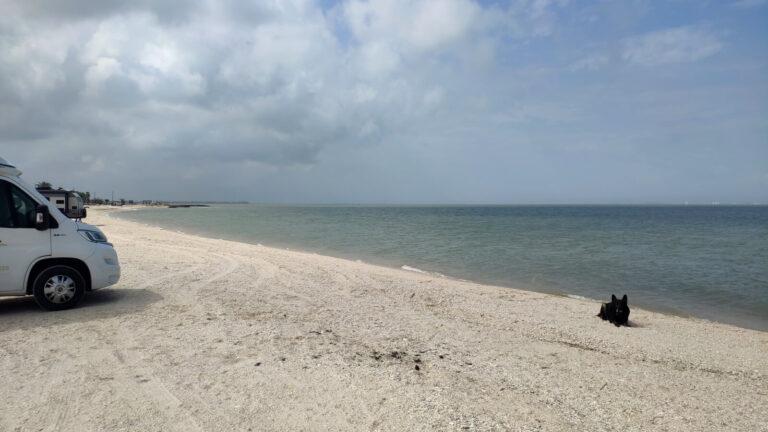 Magnolia Beach Stellplatz