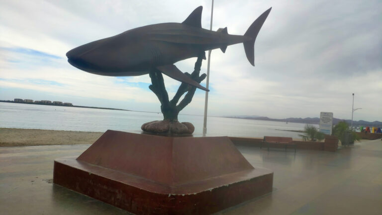 Wal in La Paz