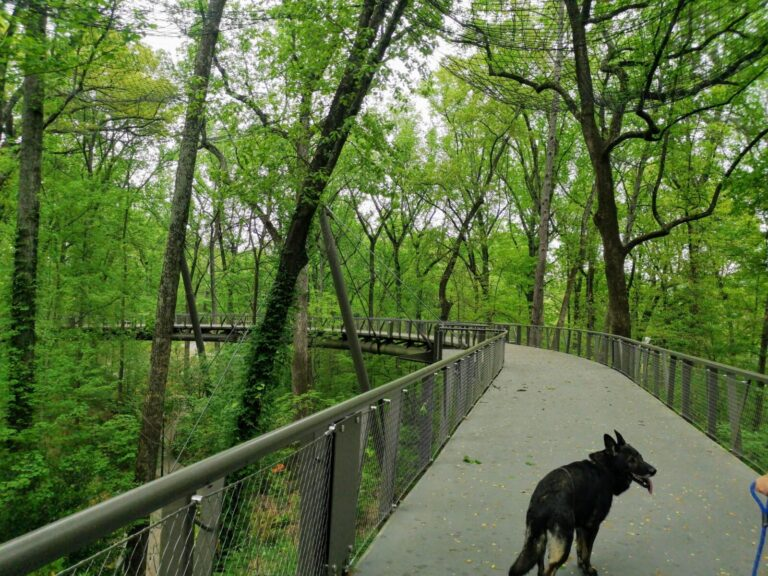 Brücke im Garten Atlanta