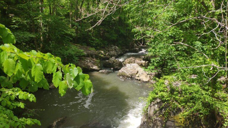 Bach Fayette Trail