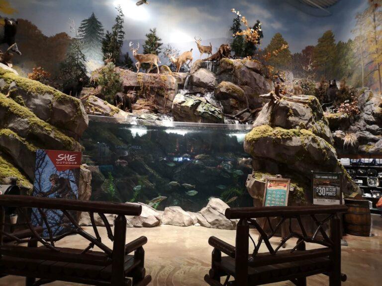 Bass Pro Shops Bristol Aquarium