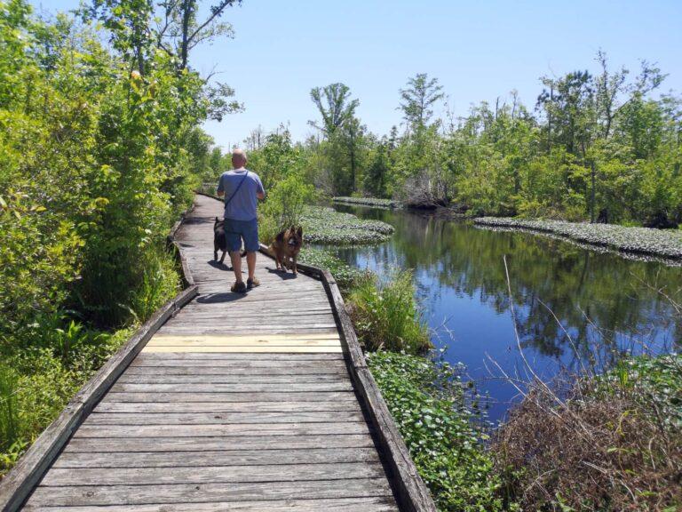 Columbia NC Riverwalk