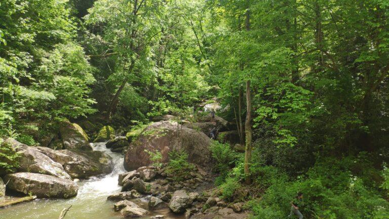 Fayette Trail