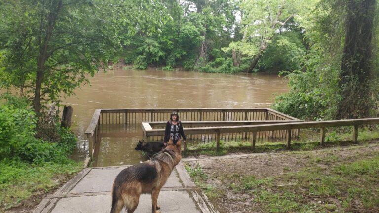 Angelstelle Rocky Mount überflutet