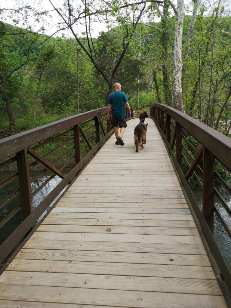 Sandstone Falls Maik und Hunde