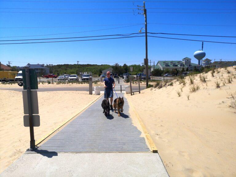 Virginia Beach Maik mit Hunden