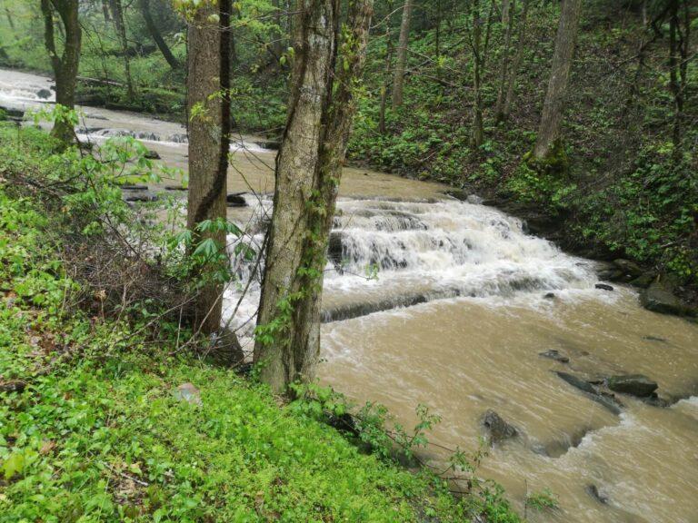wilder Fluß Virginia
