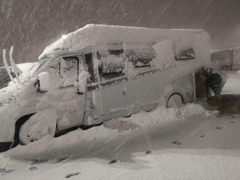 Ausladen Laramie im Schnee