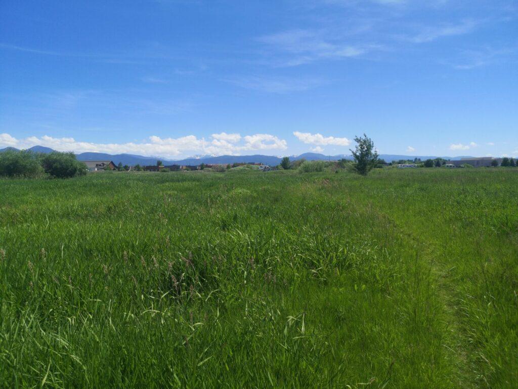 Landschaft Bozeman
