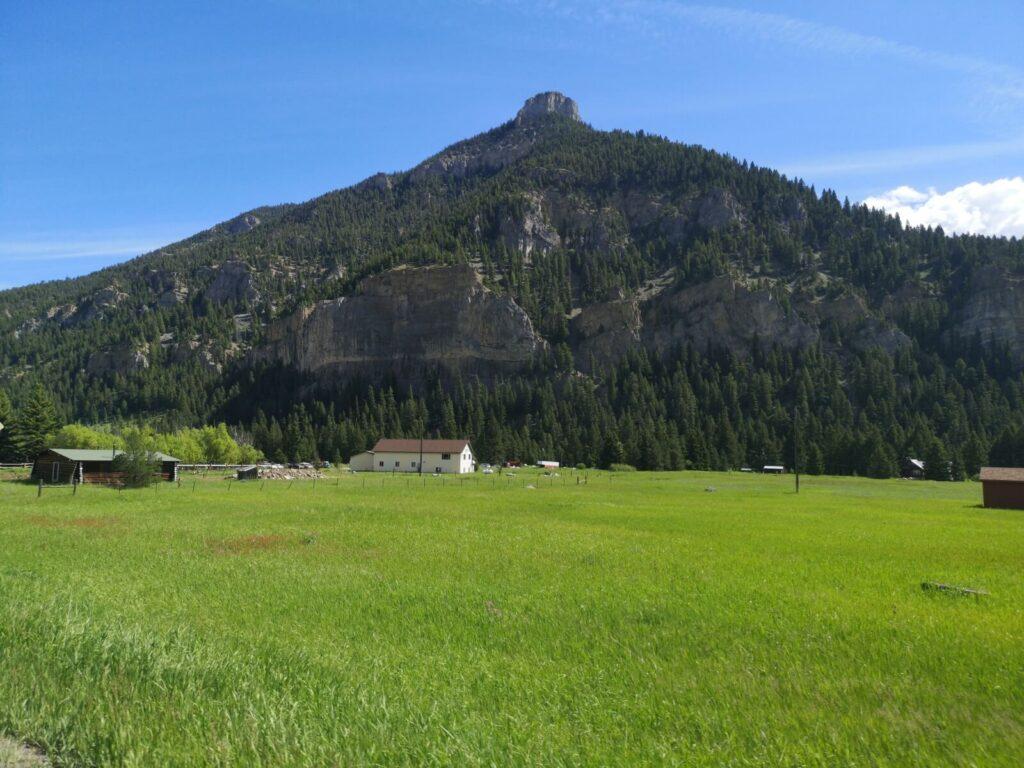 Berg in Montana