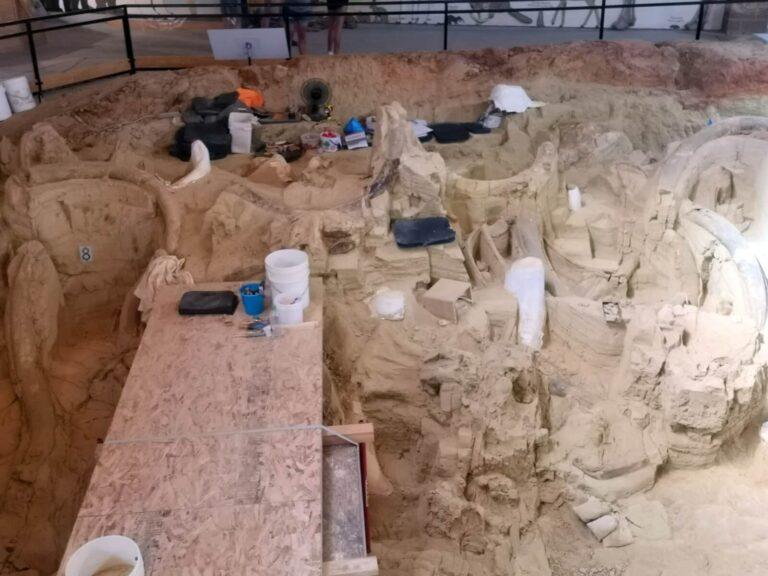 aktive Ausgrabung Mammoth Site