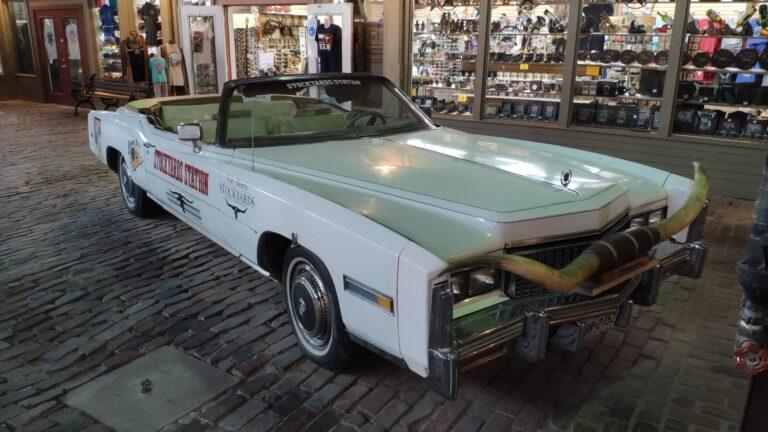 Longhorn Mobil